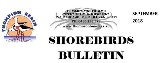 Thompson Beach Shorebirds Bulletin - September 2018